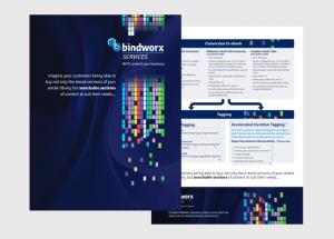 Bindworx-SERV